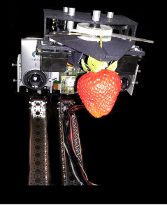 The Adev S-1 picking a stem-on strawberry